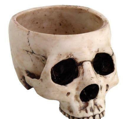 calavera vaso vikingo